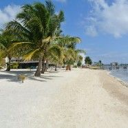 Belize – Ambergris Caye – Discovery Weekend – Aug 9 – 11 - Come and join me to find out more about this great island and the Grand Baymen community featuring condos and Leaseback opportunities Ambergris Caye, Condos, Belize, Discovery, How To Find Out, Paradise, Join, Community, Island