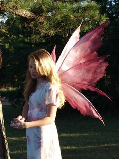 Pattern for the world famous Enchanted Fairy Wings formerly made by EnchantedCostumes.com. I have retired from making wings, but am making my