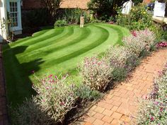 Lawns at their best! :)
