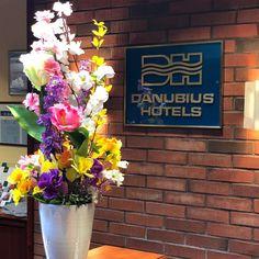 Kint és bent is beköszöntött a tavasz a Danubius Health Spa Resort Bük szállodában is🙃  Mindenhol élénk tavaszi színek és virágok várják a szálloda vendégeit, a lobby, a recepció, a lépcsőfordulókon keresztül a szálloda teljes előterében beköszöntött a tavasz😍🌸  Imádom ezeket a vidám színeket, úgy feldobják a kedvem🙃 Spa, Plants, Plant, Planets
