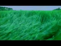 Pink Floyd - Take It Back (Clipe Oficial) HQ - YouTube