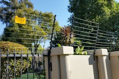 What are the Different Types of Different Types, Fence, Electric, Plants, Image, Flora, Plant, Planting