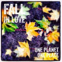 http://www.OnePlanetOnePlace.com