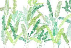 Bloompapers - Mural Palm springs