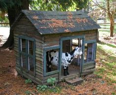 Goat House | ON THE FARM WITH