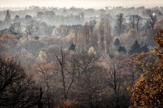 Richmond Park | 18 Incredible Places You Won't Believe Are Actually In London