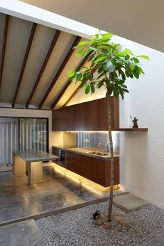 Here's an intriguing renovation of a mid terrace house for a collector of Chinese antiques in Kuala Lumpur by Fabian Tan.