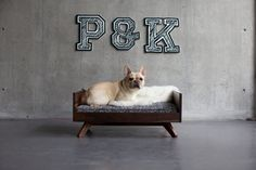 Pup & Kit pet furniture