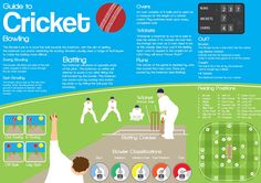 Cricket Infographic on Behance