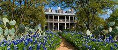 Sage Hill Inn Above Onion Creek Kyle, Texas