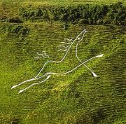 This is the White Horse carved above Folkestone, Kent. Land Art, Kent England, White Horses, English Countryside, British Isles, Beautiful Islands, Public Art, Great Britain, The Great Outdoors