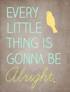 "sometimes you just need to grab people by the shoulders and say ""every little thing is gonna be alright"""