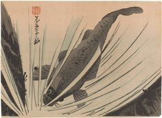 The Freer Gallery of Art and the Arthur M. Sackler Gallery are the Smithsonian's museums of Asian art. Japanese Prints, Japanese Art, Freer Gallery, Carp, Asian Art, Meiji Era, Museum, Woodblock Print, China
