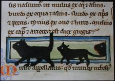 A Procession of Cats. Bodleian Library, Oxford, mid-13th century manuscript.