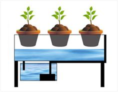 What are Hydroponics - Homemade hydroponic systems :http://gardenandseeds.co.uk/what-are-hydroponics-homemade-hydroponic-systems/