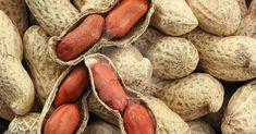 El maní o cacahuate es un aperitivo muy valorado en todo el mundo. Normalmente, se come en las meriendas y es una compañía habitual en las noches de cerveza. El maní se puede comer crudo,