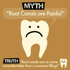 Dentaltown - Myth: Root canals are Painful. Truth: Root canals are no more uncomfortable than a common filling. Dental Life, Dental Health, Dental Humor, Dental Hygiene, Dental Quotes, Children Dental Care, Dental Fun Facts, Nursing School Tips, Ob Nursing
