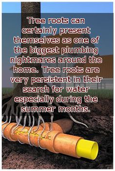 Summer is fast approaching, just a reminder for those who live in wooded areas. Check your plumbing with us, give Ken a call 8364 5855 #Plumber #Plumbing #TreeRoots