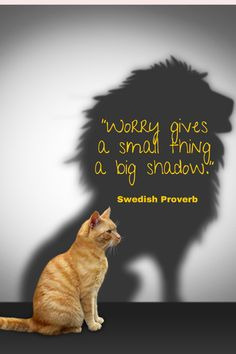 #Worry gives a small thing a big shadow Learn the #artofgoodenough here. The Help Book, Book Quotes, Life Quotes, Self Pity, Finding Happiness, Mission Impossible, Positive Psychology, Big Fish, What To Read