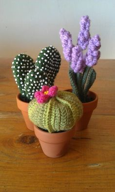 Inspiration only no pattern – Artofit Crochet Cactus, Crochet Art, Crochet Home, Love Crochet, Crochet Gifts, Yarn Projects, Knitting Projects, Crochet Projects, Crochet Flower Patterns