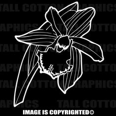 ORCHID Vinyl Decal - #F083