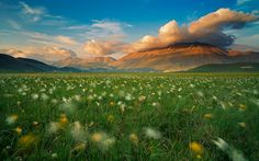"Photographer Luca Giustozzi, who dubbed the shot ""Land of Whispering Wind,"" captured this picturesque landscape outside of the village of Castelluccio di Norcia, which borders Monti Sibillini National Park. What A Wonderful World, Beautiful World, Beautiful Places, Simply Beautiful, Landscape Photography, Nature Photography, Amazing Photography, Flora, She Wolf"