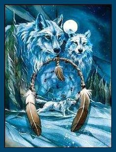 native american wolves pictures   Native American Wolf