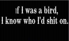 I always wanted to be a bird...this being one reason why...lol