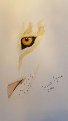 Lioness watercolor painting for sale