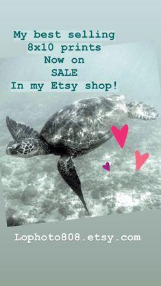 my best selling original prints Sell On Etsy, My Etsy Shop, Etsy Christmas, Beach Art, Handmade Gifts, Etsy Handmade, Art Market, Shopping Center, Shopping Mall