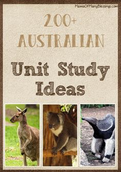 Over 200 different Australian learning ideas. Perfect for your Australia unit study or Australia Day celebration. Recipes, crafts, printables, lesson plans, books, hands on learning ideas, and MUCH more!!