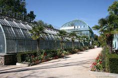 Palmarium, Jardin des Serres d'Auteuil