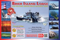 Welcome to Brier Island Lodge! near Digby, Nova Scotia. Enjoy oceanview accommodations, fresh seafood and whale watching on the Bay of Fundy! Whale Watching, Nova Scotia, East Coast, Cruise, Tours, Island, Lifestyle, Places, Travel