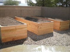 raised bed gardens...aka the lazy girl's garden beds...I'm just saying I wouldn't have to bend down so far. ;)