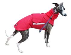 Greyhound Winter Dog Coat Dog Jacket with snood от PepperPetWear