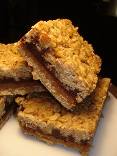 Chocolate Peanut Butter Oat Squares!