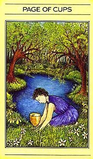 Apple River Tarot Readings - It's Not The Destination, It's The Journey: Page of Cups - Love Vs Ego