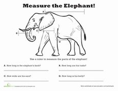A collection of animals students can measure! I compiled them all together to make a Measurement Zoo for the kids. They LOVED it!    http://www.education.com/collection/holyjellyfish/measure-animal/