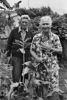 One of the last taumau (arranged) marriages took place in 1918 between Eruera and Amiria Stirling. Agreed to by elders of the two iwi involved – Ngāti Porou and Te Whānau-ā-Apanui – the marriage took place in two stages. The first, in December 1917, saw the two teenagers introduced and sent to bed together. The second, in May 1918, was a huge church ceremony