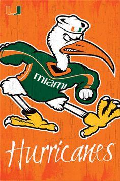 University of Miami Hurricanes Sebastian-Ibis Official NCAA Team Logo Poster - Trends International Logo Sticker, Decal, Sticker Vinyl, Miami Football, College Football, College Sport, Football Baby, College Campus, Football Season
