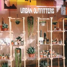 """124k Likes, 558 Comments - Urban Outfitters (@urbanoutfitters) on Instagram: """"Hello, spring!  #UODisplay : @jeannebbe"""""""