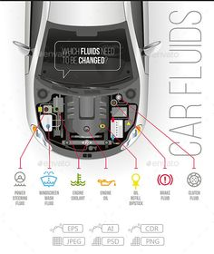 Buy Car Fluids by Antonio-BanderAS on GraphicRiver. Which fluids need to be changed under the hood of the car? Info Board, Jetta A4, Safe Driving Tips, Automobile, Car Facts, Car Care Tips, Brakes Car, Car Essentials, Learning To Drive