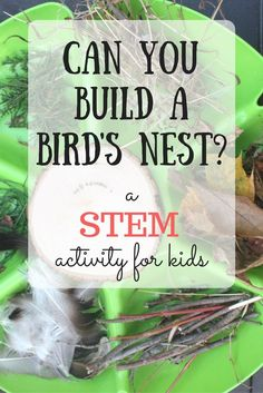 you build a nest? This STEM challenge for kids gets kids thinking creatively and applying imagination to science!Can you build a nest? This STEM challenge for kids gets kids thinking creatively and applying imagination to science! Nature Activities, Steam Activities, Science Activities, Science Experiments, Science Projects, Science Education, Science Ideas, Physical Science, Stem Projects For Kids