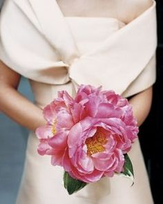 Coral Charm Peonies, would use these but in white.