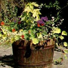 Definitely have some barrel planters out front, possibly with hops or other beer related plants in them.
