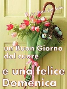 Immagini Buongiorno Buona Domenica 6896 Good Morning Flowers, Diy And Crafts, Christmas Wreaths, Lily, Holiday Decor, Sunday, Dolce, Tweety, Blessings