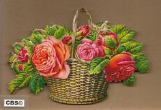 Mand met wilde rozen poezieplaatjes 5079