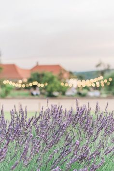 A Relaxed Summer Wedding from Slovakia - Chic Vintage Brides : Chic Vintage Brides Lavender Weddings, Lilac Wedding, Summer Wedding, Our Wedding, Chic Vintage Brides, What A Beautiful Day, Winter Wonderland Wedding, Bridal Boutique, Flower Decorations