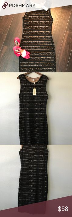 Max Studio black Lace Midi Body Con Dress Size XL Such a pretty dress!!  Brand new with tags, has never been worn. Black lace overlay a nude slip. Dress is completely stretchy so will fit to your shape. Sleeveless midi length body con dress. Size XL. Beautiful high quality.   Will ship from my smoke free home Max Studio Dresses Midi