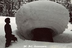 Glacier National Park - Canada - a snow mushroom.  Not that rare, they form on tree stumps in the right conditions.